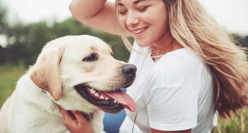 Koiran Kakominen